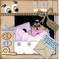 Stori-says-peekaboo-000-Page-1.jpg