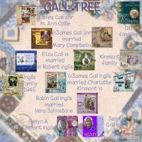 Gall_tree_479x479.jpg