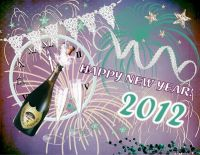 new_year_2012.jpg