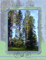 Diane-Isbell-001-Tall-Trees.jpg