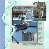 Cruise-2007-006-Cabo-pelican.jpg