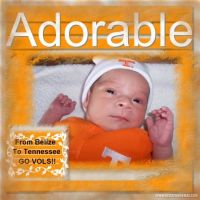 Copy-of-My-Scrapbook-Caleb-Go-Tennessee-000-Cotton-Candy-Sampler.jpg
