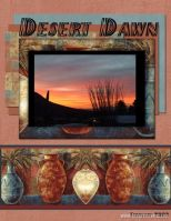 February-2008-_3-000-Desert-Dawn-Moonbeam.jpg