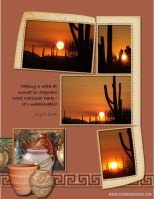 July-2008-_2-003-Sunset-Saguaro-West.jpg