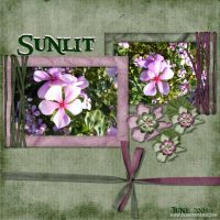 June-2008-_6-003-Sunlit-Flowers.jpg