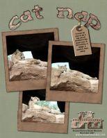 My-Scrapbook-006-Catnap.jpg
