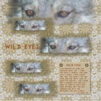 September-2007-_6-002-Wild-Eyes---eye_s-challenge.jpg