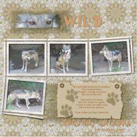 September-2007-_6-003-Wolf-p_-2.jpg