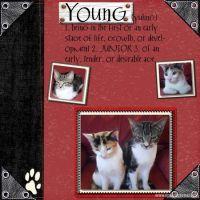 charlies-kittens-000-Page-1.jpg
