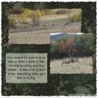A-Fall-Walk-Page-8.jpg