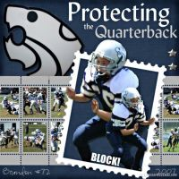 Protecting_the_QB