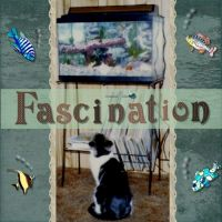 Fascination-000-Page-1.jpg