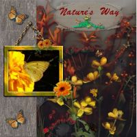 Natures-Way-000-Page-1.jpg