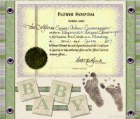 sac_Baby-Feet_Challenge-000-Page-1.jpg