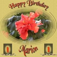 marion-hb-000-Page-1.jpg