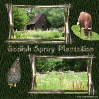 Godiah-Spray-Plantation-000-Page-1.jpg