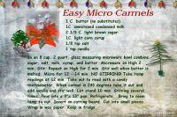 micro-carmels-07-000-Micro-Carmel-pg-1.jpg