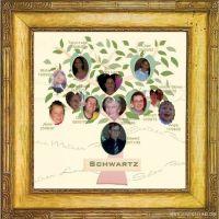 StammB_ume-002-Schwartz.jpg