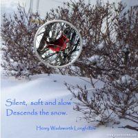 Winter-Blast_2-000-Page-1.jpg