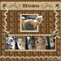 sac_Hobo-000-Page-1.jpg
