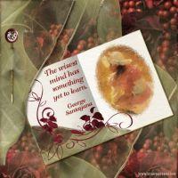 sac_Chiffon-Rose-001-Page-2.jpg