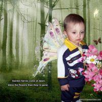 pjk-Fairy-Garden-000-Page-1.jpg