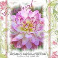 Flower-book-000-Page-1.jpg