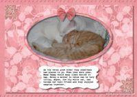 Mama-Tammy-009-Page-10.jpg