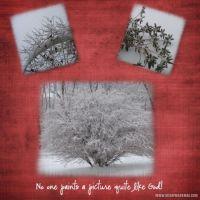 twp_Snow2.jpg