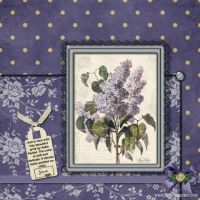 June-Challenges-DP-002-Color-Challenge-p_-2_-purple-flower-print.jpg