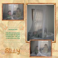 mosquito-net-page-000-Page-1.jpg