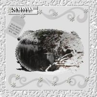 Copy-of-Snow-Blue-Heron-000-Page-1.jpg
