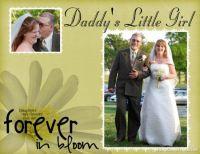 Harlan-Wedding-000-Wedding-pics-Page-1.jpg