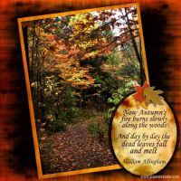 sac_Autumn_s-Fire-000-Page-1.jpg