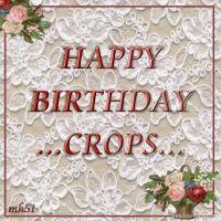 HB-Crops.jpg