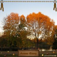 AutumnBeauty_1.jpg