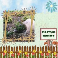 PottedBunny_1.jpg