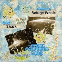 Shedd-Aquarium-000-Page-1.jpg