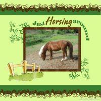 wcw-DowntoEarth-Horse.jpg