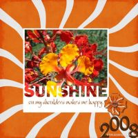 August-2008-_4-002-Sunshine-Clipped-Mask.jpg