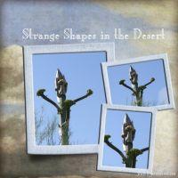 November-2008-_4-001-Strange-Shapes.jpg