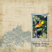 October-2008-003-Butterfly-Festiva_l.jpg