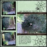 October-2008-Last-One-000-spider-web-stacy-carlson.jpg