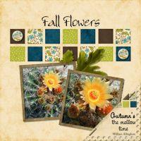 September-2008-_4-002-Fall-Flowers.jpg