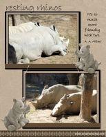 Zoo-2008-_2-002-rhinos.jpg