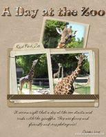 Zoo-2008-_2-003-giraffe.jpg