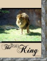 Zoo-October-2008-001-Lion-King-Deanne.jpg