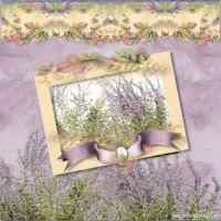 sac_Lilac-Whisper-000-Page-1.jpg