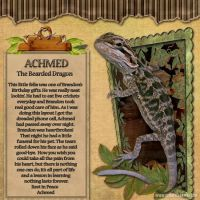 Achmed_copy.jpg
