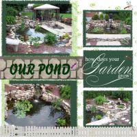 Pond-2006-000-Page-1.jpg